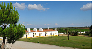 General View - Herdade do Sobroso - Vidigueira, Alentejo, PORTUGAL