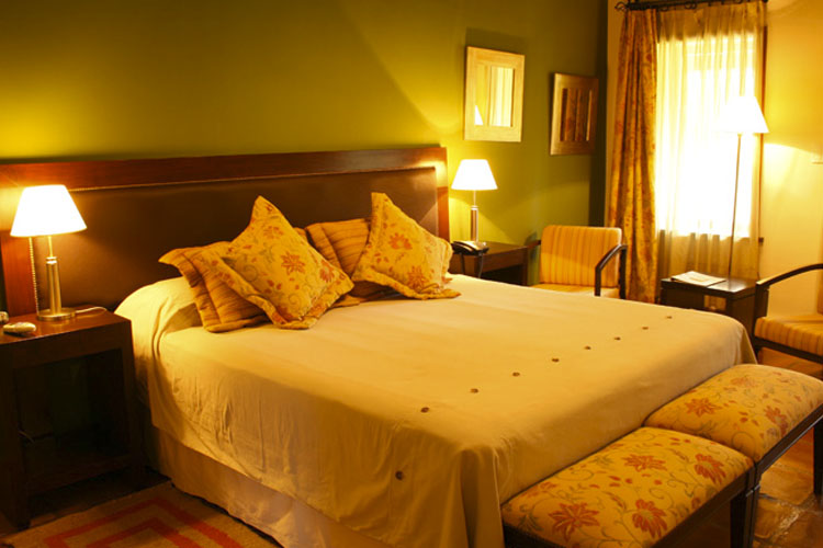 Standard Double Room - Viñas de Cafayate Wine Resort - Cafayate