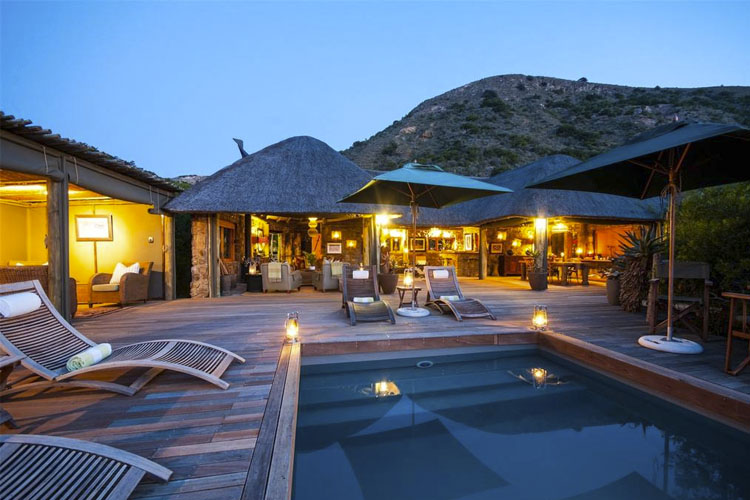 Pool - Hillsnek Safari Camp - Amakhala Game Reserve