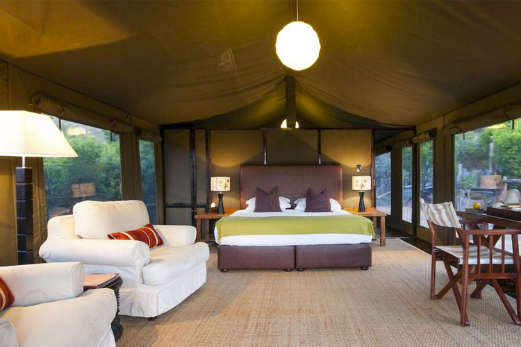 Luxury Safari Tent (Family Room) - Hillsnek Safari Camp - Amakhala Game Reserve
