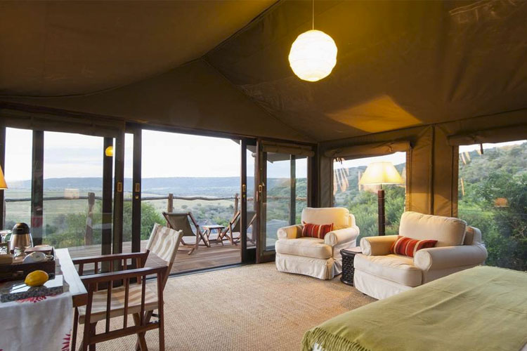 Luxury Safari Tent - Hillsnek Safari Camp - Amakhala Game Reserve