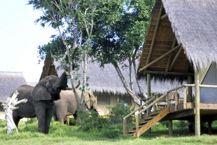 Exterior - Gorah Elephant Camp - Addo