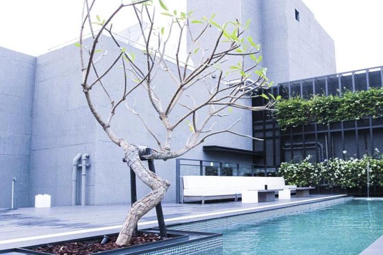 Pool - Hotel Proverbs Taipei - Taipeh