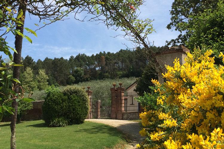 Garden - Albergo Villa Marta - San Lorenzo a Vaccoli