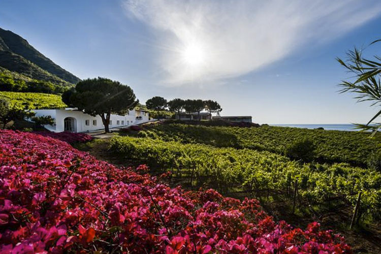 Facade and Garden - Capofaro Malvasia & Resort - Salina