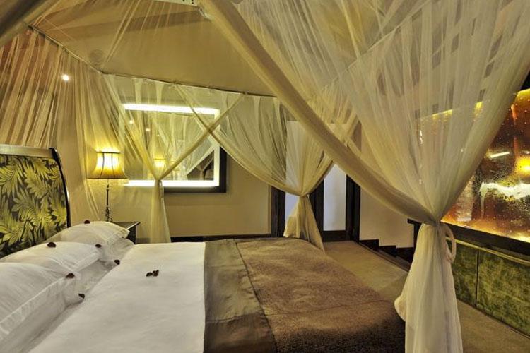 Double Room - Arusha Coffee Lodge - Arusha
