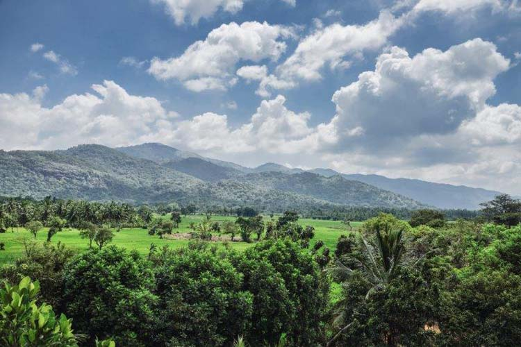 Surroundings - Kalundewa Retreat - Dambulla
