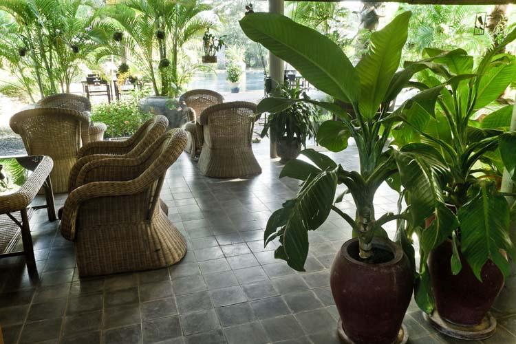 Terrace - Battambang Resort - Battambang