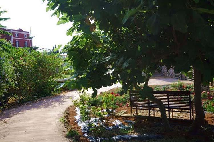 Garden - Son Granot - Es Castell