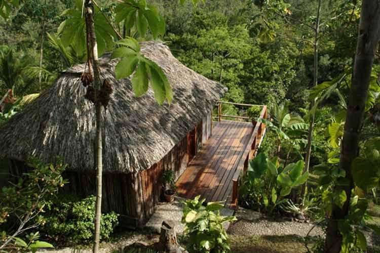 Riverfront Cabana - Blancaneaux Lodge - Mountain Pine Ridge Reserve