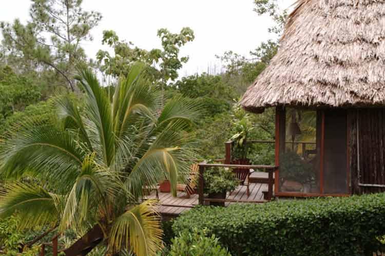 Honeymoon Cabana - Blancaneaux Lodge - Mountain Pine Ridge Reserve