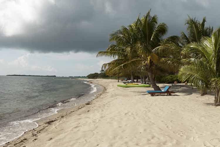 Beach - Turtle Inn - Placencia
