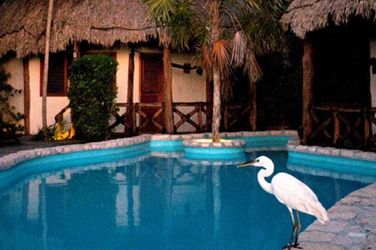 Garden Bungalows - Xaloc Resort - Isla de Holbox