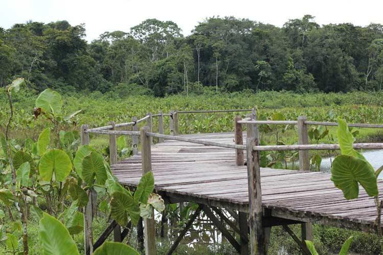 Hallway - Kapawi Ecolodge - Territorio Achuar