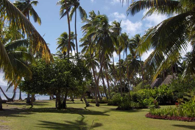 The Gardens Around the Resort - J-M Cousteau Fiji Islands Resort - FIJI