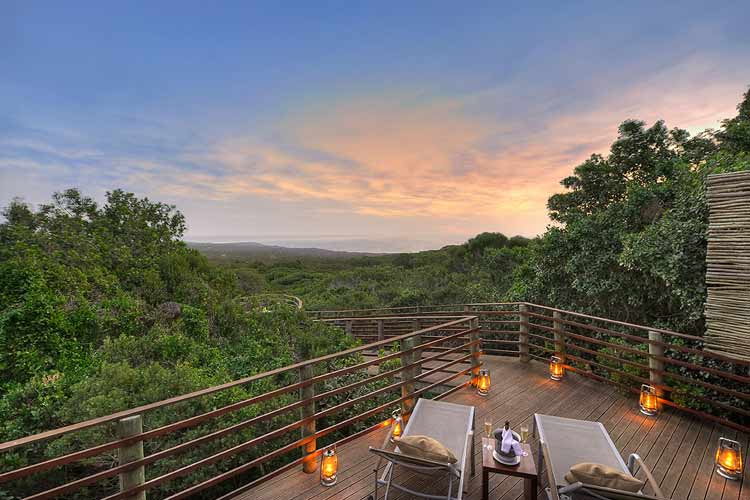 Garden Lodge Terrace - Grootbos Nature Reserve - Gansbaai