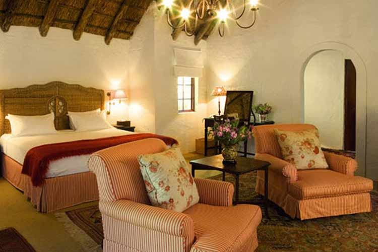 Suite - The Elephant House - Addo