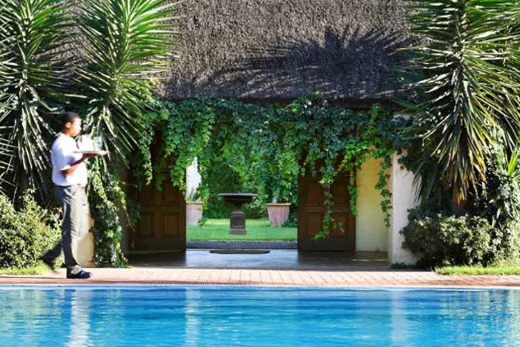 Swimming Pool - The Elephant House - Addo