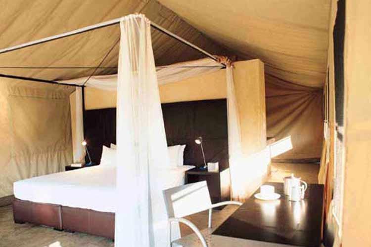 Mantobeni Domitory - Honey Guide Camp - Kruger National Park