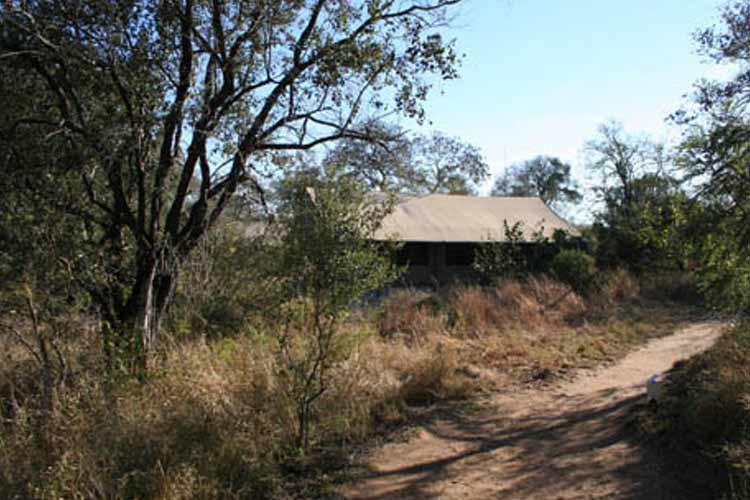 Khoka Moya Tent - Honey Guide Camp - Kruger National Park