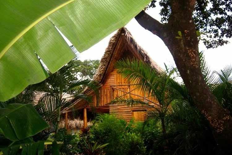 Cottage - El Sabanero Eco Lodge - Tamarindo