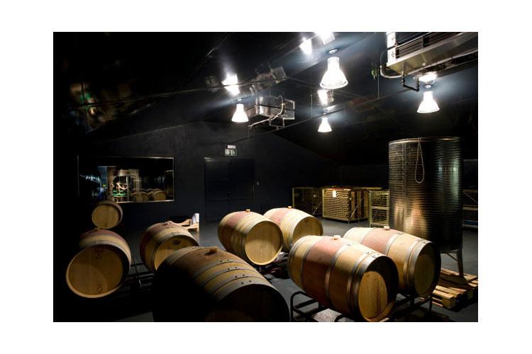 Wine Cellar - Ca Na Xini - Ferreries