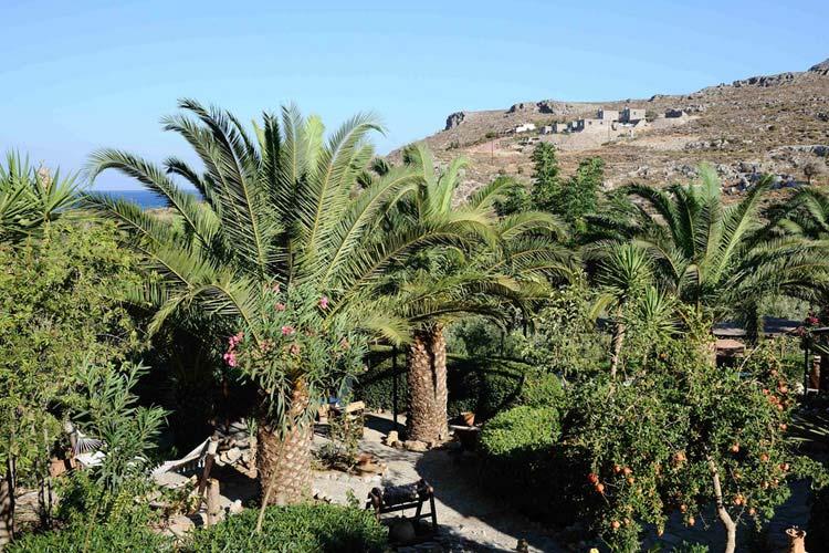 Garden - Yiannis Retreat - Kato Zakros