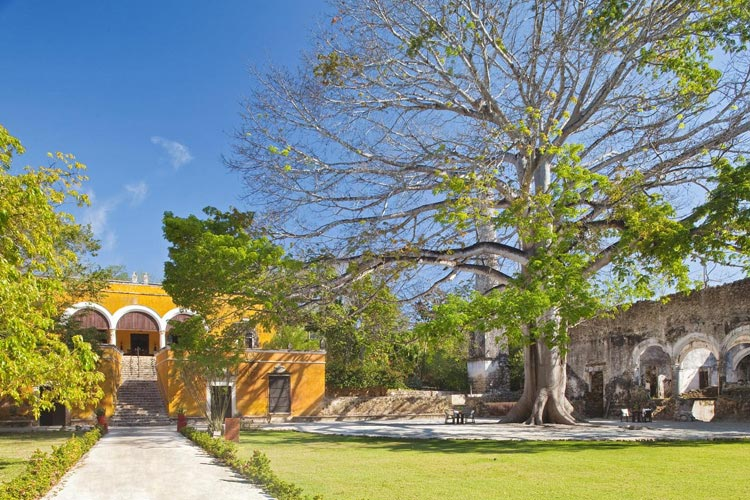 General View - The Hacienda Uayamon - Uayamón