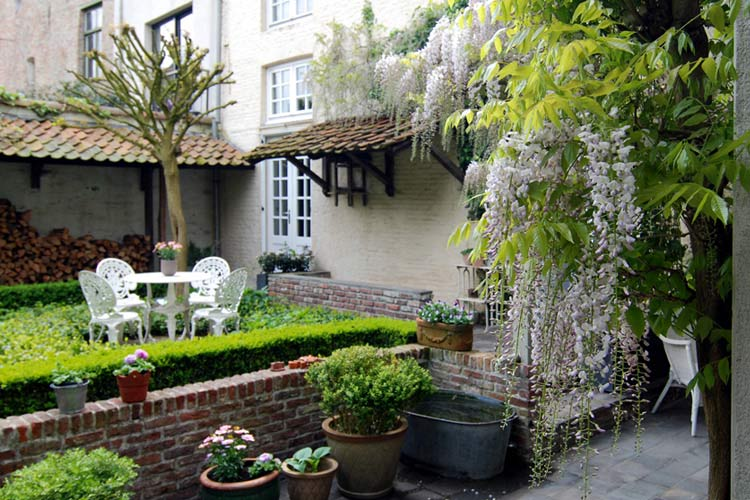 Garden - Number 11 Exclusive Guesthouse - Brujas