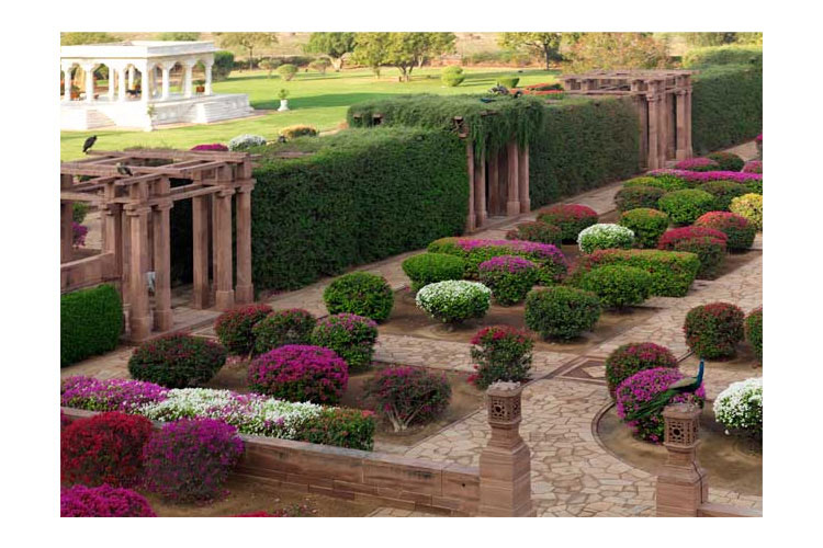 Palace Garden - Umaid Bhawan Palace - Jodhpur