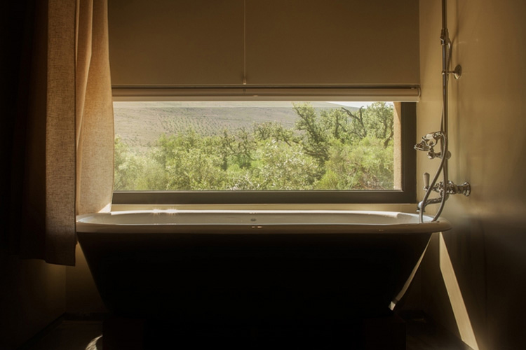 Aventura Descoberta Room - Cooking and Nature Emotional Hotel - Alvados