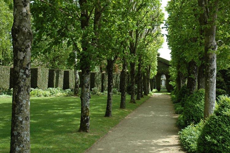 Garden - Château de la Ballue - Bazouges-la-Pérouse
