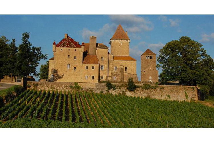 General-View - Château de Pierreclos - Pierreclos