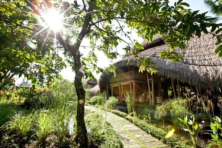 Healing Path - Fivelements Puri Ahimsa - Mambal