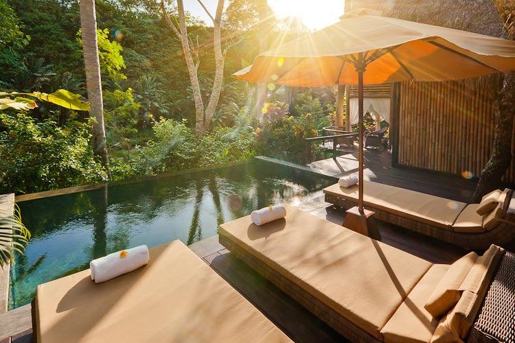 Plunge Pool at Bidadari Suites - Fivelements Puri Ahimsa - Mambal