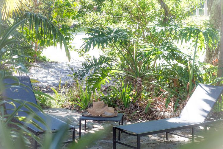 Terrace - Byron Springs Guesthouse - Byron Bay