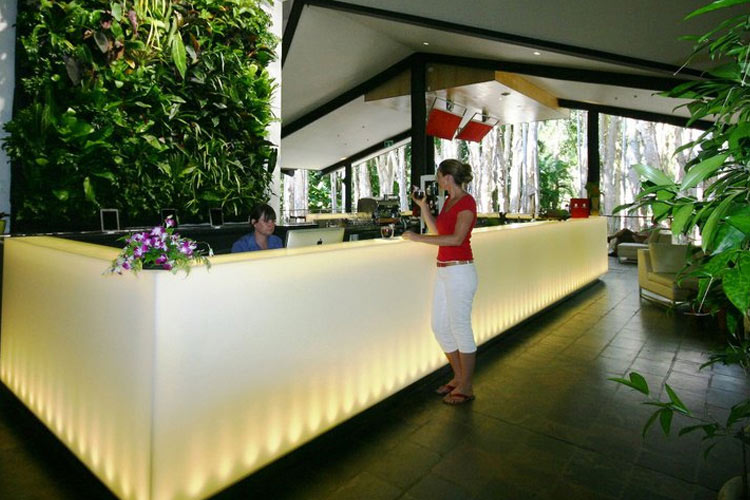 Reception - Kewarra Beach Resort & Spa - Kewarra Beach