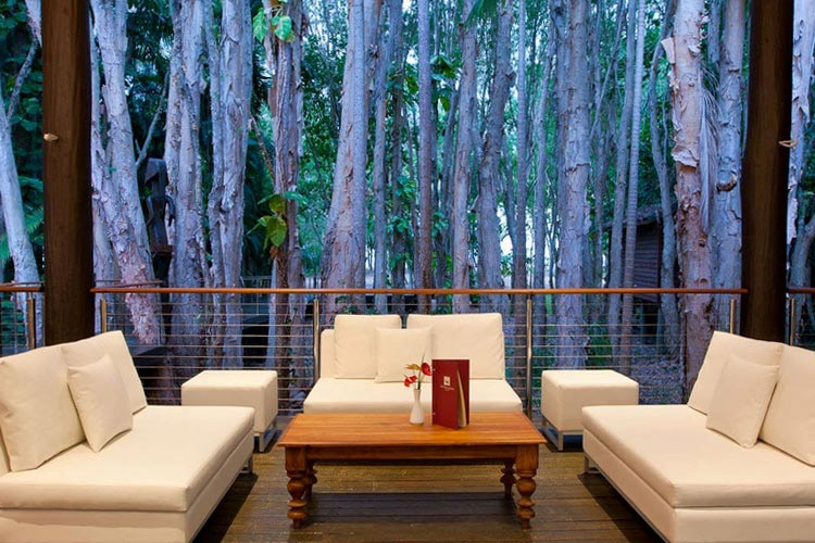 Forest Lounge - Kewarra Beach Resort & Spa - Kewarra Beach