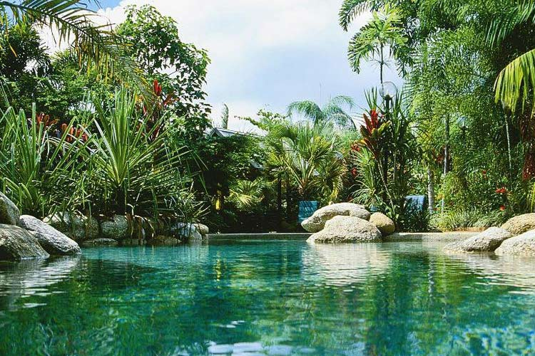 Pool - Kewarra Beach Resort & Spa - Kewarra Beach