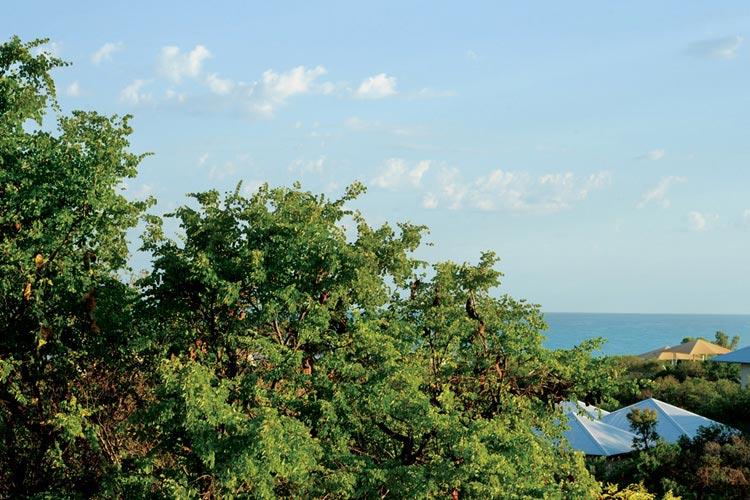 Eco Villa Garden - Eco Beach Retreat - Broome