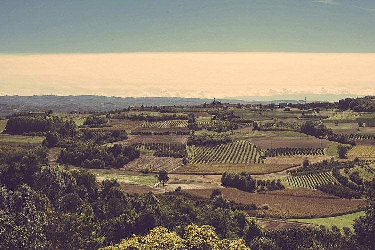 The Views - Cà Alfieri al Trenta - Govone