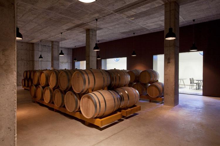 Wine Cellar - Cava & Hotel Mas Tinell - Vilafranca del Penedès