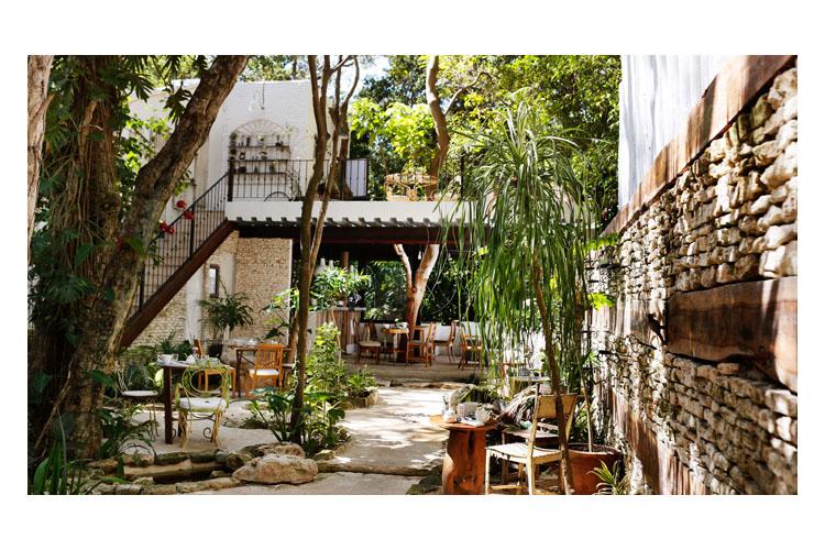 Garden - Hotel la Semilla - Playa del Carmen