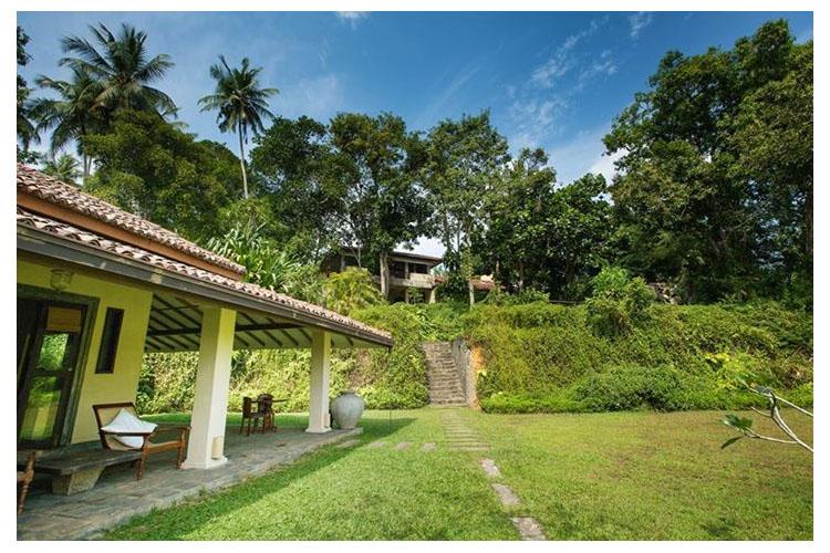 Garden - The River House - Balapitiya