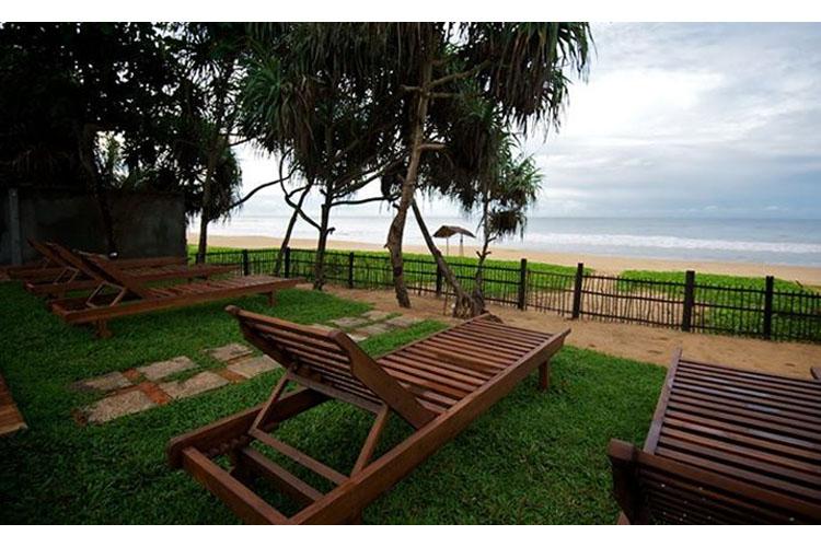 Terrace - Roman Beach - Hikkaduwa