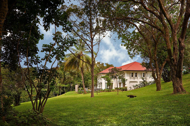 Manor - The Club at Capella Singapore - SINGAPORE