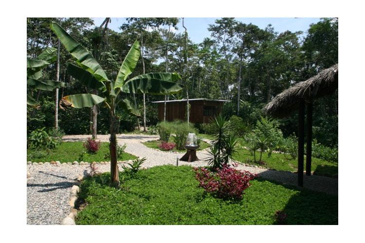Garden - Hamadryade Lodge - Puerto Misahuallí